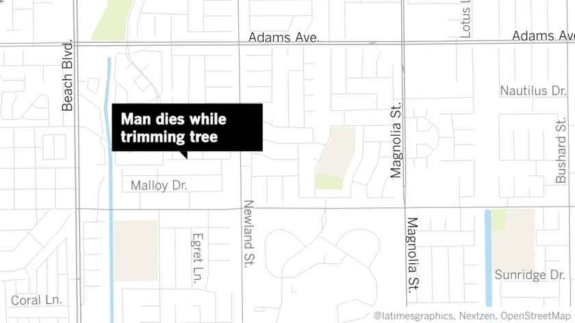 la-mapmaker-man-dies-while-trimming-tree08-19-2019-08-16-26.png