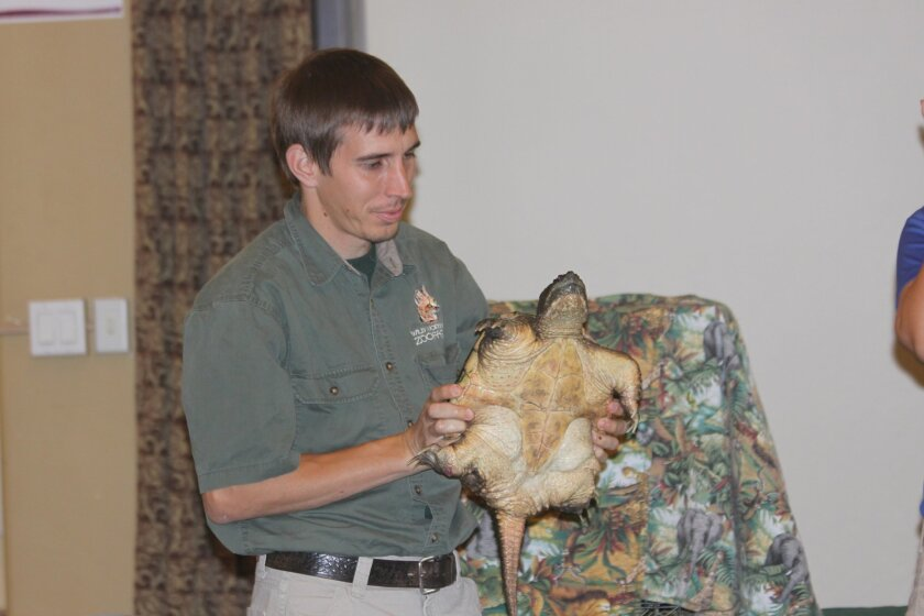 Animal keeper Michael Donnellon shows Sally the Snapping Turtle, encouraging people to keep their fingers away from her, as she might confuse them for her favorite snacks, hot dogs.