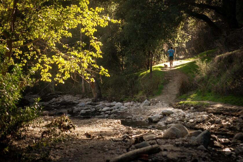 L.A. Walks Brookside path