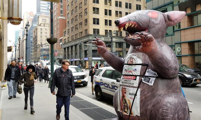Personas caminan frente a una rata inflable de entre tres y cuatro metros, en una calle de Nueva York (Estados Unidos) el 22 de febrero de 2019. EFE
