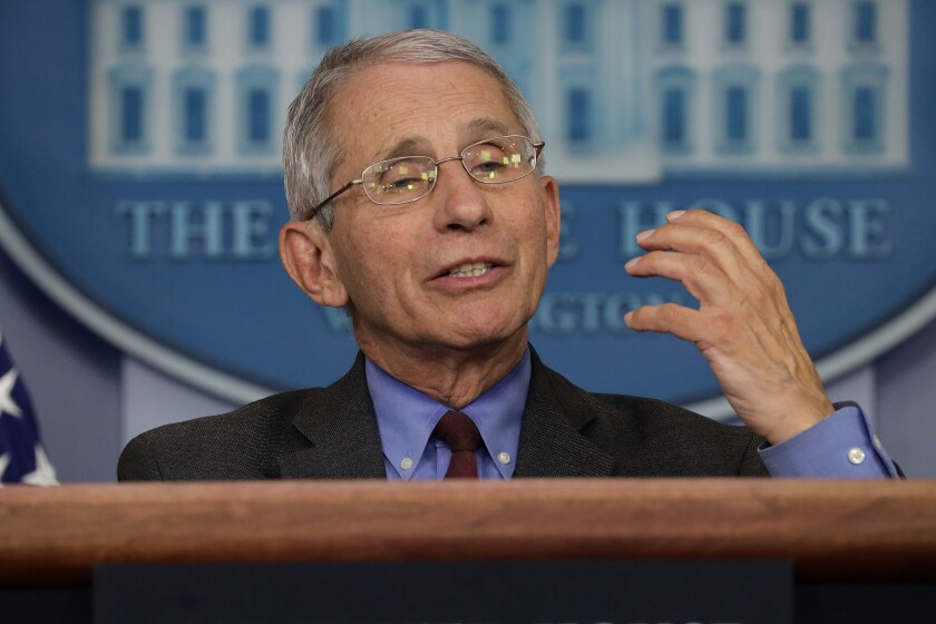Dr. Anthony Fauci, director of the National Institute of Allergy and Infectious Diseases, speaks at an April daily briefing of the White House Coronavirus Task Force.