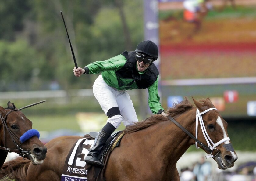 Jockey Florent Geroux celebrates after riding Work All Week to victory in the Breeders' Cup Sprint horse race at Santa Anita Park, Saturday, Nov. 1, 2014, in Arcadia, Calif. (AP Photo/Jae C. Hong)