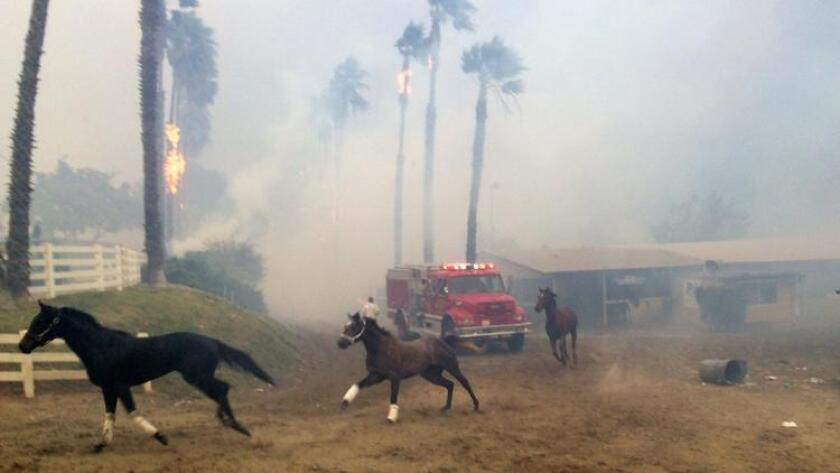 Southern California fires live updates: New evacuation orders issued