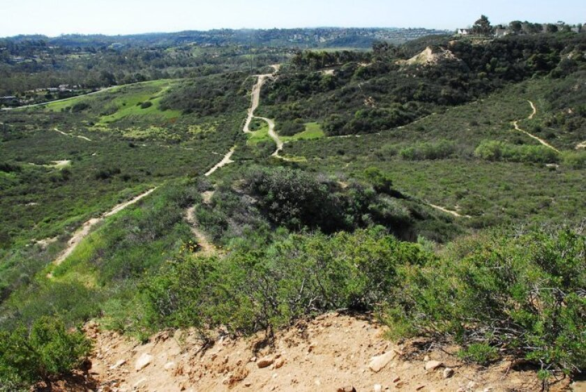 Several trails wind through the canyon of Manchester Preserve in Encinitas.