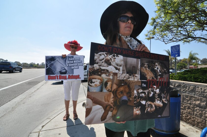 "Belinda Rachman, front, and Gigi Flick, back, are members of local animal rights groups protesting outside an Oceanside pet store because it sells puppies bred at commercial facilities they call ""puppy mills."""