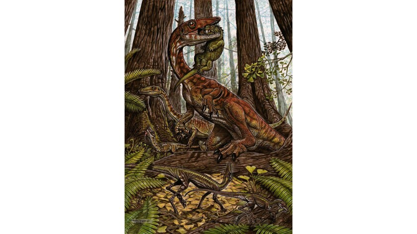 In this illustration, a group of three Buriolestes, one with a small rhynchosaur in its mouth. Below is a pair of Ixalerpeton polesinensis. The dinosaurs are depicted in a late Triassic forest.