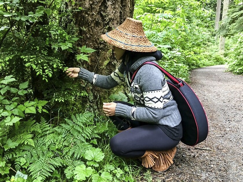 Vancouver, Canada - Stanley Park Talking Trees Tour guided by Talaysay Tours.