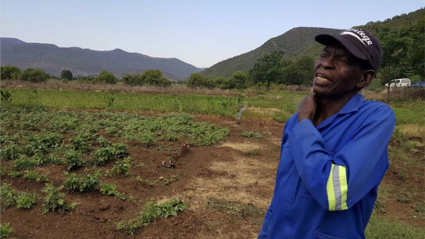 Ndoshi Masoka, a farmer who was granted land by the government in 2005, used to live on this farm bu