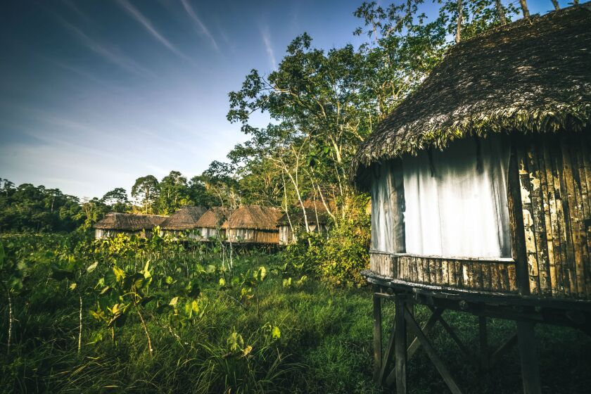 The remote Kapawi Ecolodge is home base for a weeklong excursion to the Amazon region of Ecuador.