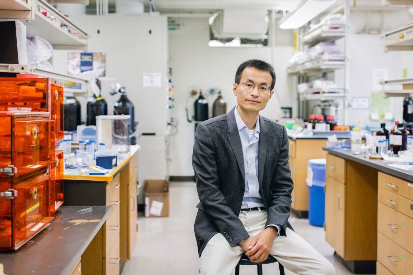 Peidong Yang in his lab at UC Berkeley.