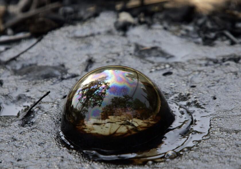 Methane gas bubbles up at the La Brea Tar Pits.