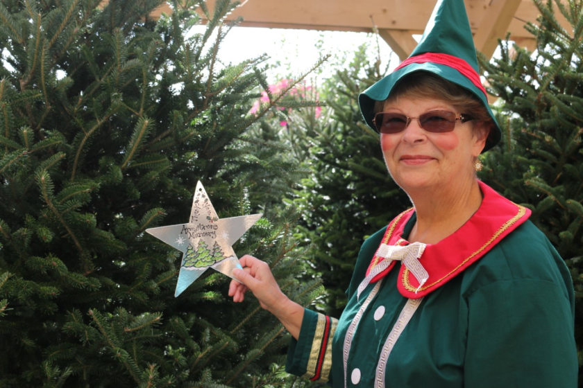 Marlene Samocha, president-elect of San Luis Rey Rotary, holds a  Christmas Star, which can be purchased at the upcoming Old Fashioned Christmas at Heritage Park in Oceanside.