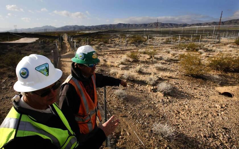 U.S. solar plan creates energy zones, excludes sensitive lands