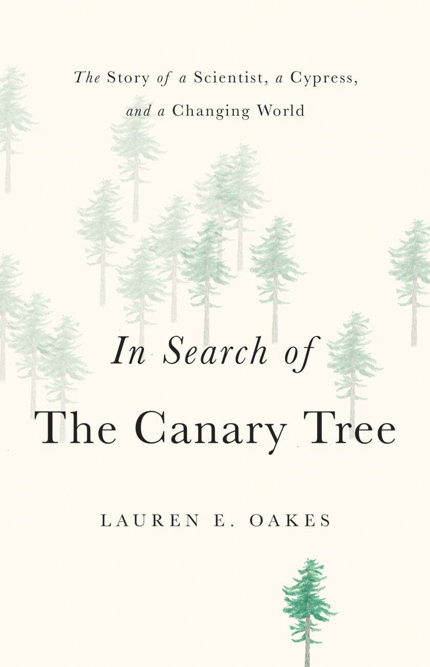 """A book jacket of Lauren E. Oakes' """"In Search of The Canary Tree."""" Credit: Basic Books"""