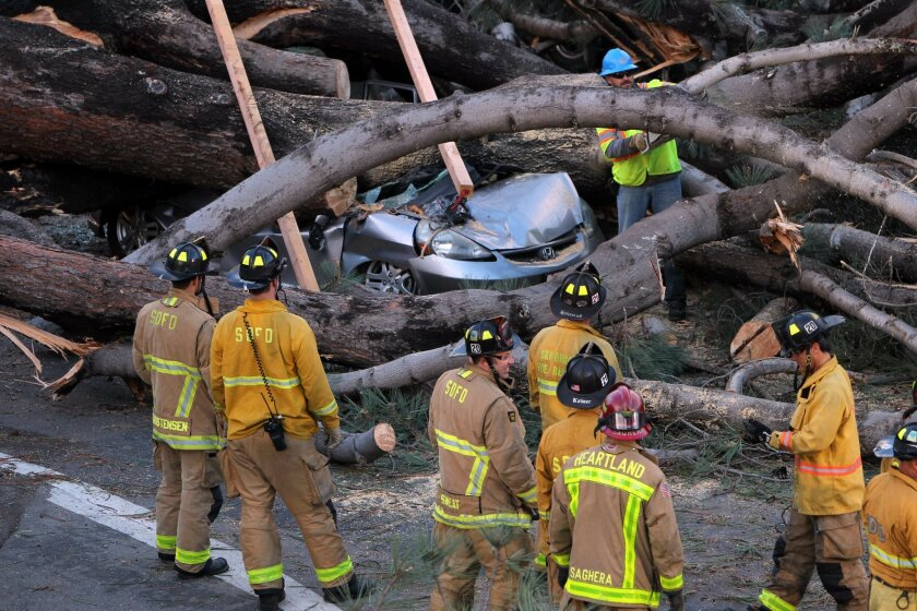 Firefighters worked to move a large tree which  fell across all the lanes of Ingraham Street in Pacific Beach and crushed multiple cars including a Honda that was occupied, killing that person.