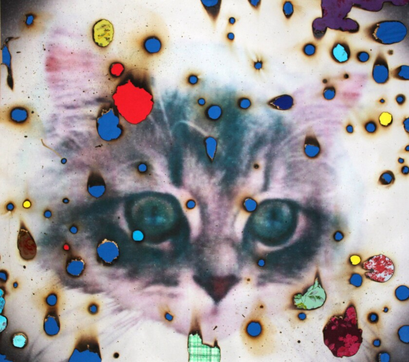 """""""I ♥ Kitties"""" by Miyoshi Barosh, 2014. Hand-embellished digital pigment print with fabric collage, 44 inches by 46 inches."""