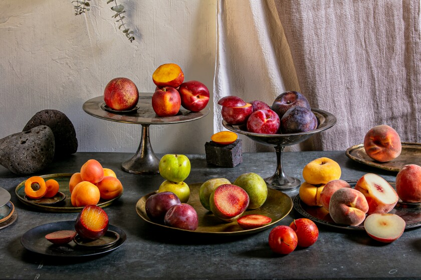 Plates and platters of stone fruit: peaches, nectarines, plums, apricots.