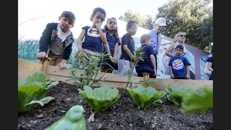 Photo Gallery: Edison Elementary/Glendale Kiwanis unveil new vegetable gardens on school grounds