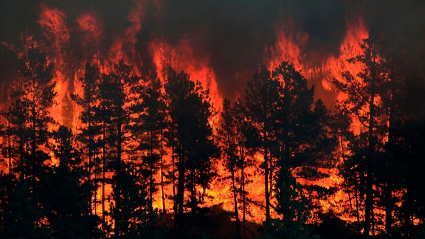 A continued trend of backcountry development and aggressive fire suppression to keep those properties safe has led to densely packed forests in close proximity to many communities.