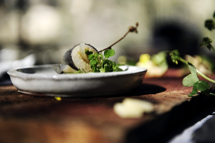 Trout pickled in mountain vinegar, a dish created by Pascal Baudar, was made from ingredients foraged in the wild.
