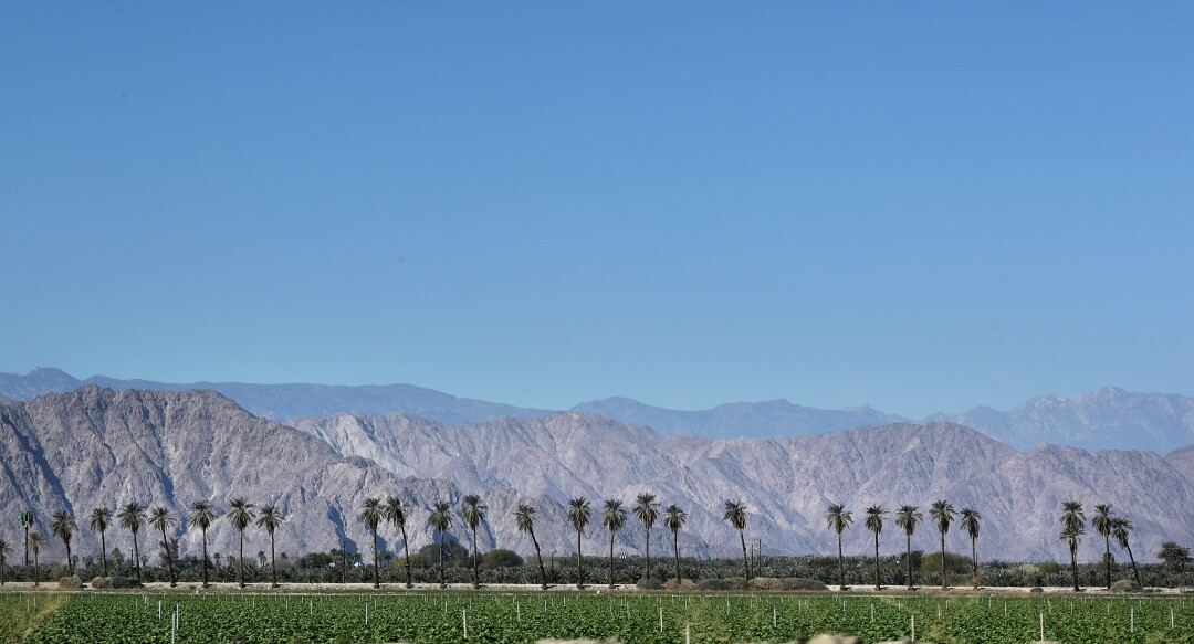 Agricultural fields, palm trees and the San Jacinto Mountains dot the landscape on the outskirts of Coachella.