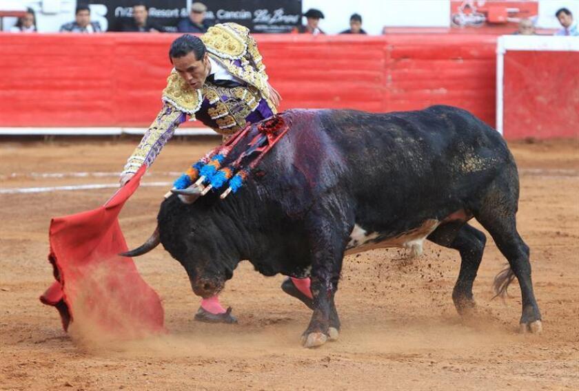 """El torero mexicano Alfredo Ríos """"El Conde"""". EFE/Archivo"""