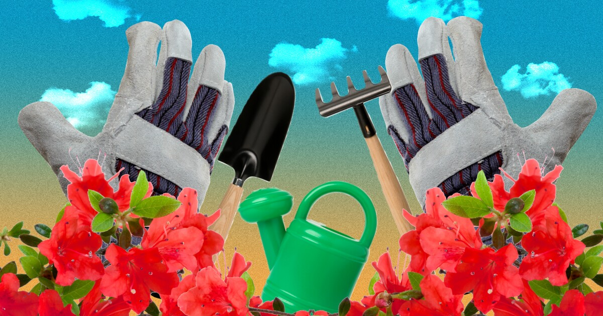 Forget the sad last-minute orchid. Here are 9 Mother's Day gifts any gardener will love