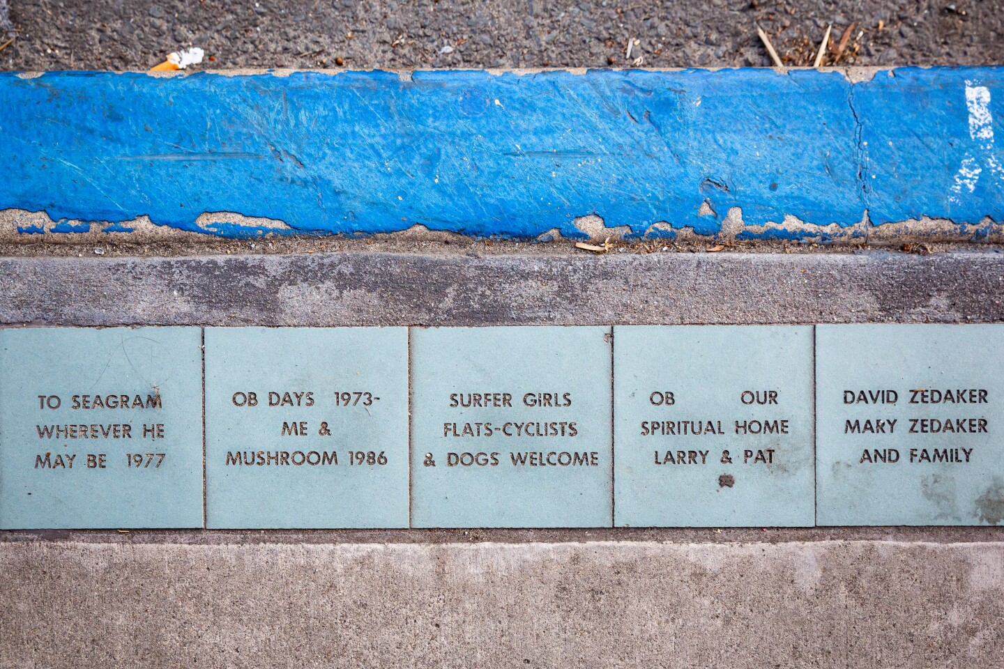 Some of the thousands of ceramic tiles along Newport Avenue that are part of the Ocean Beach Tile Project.
