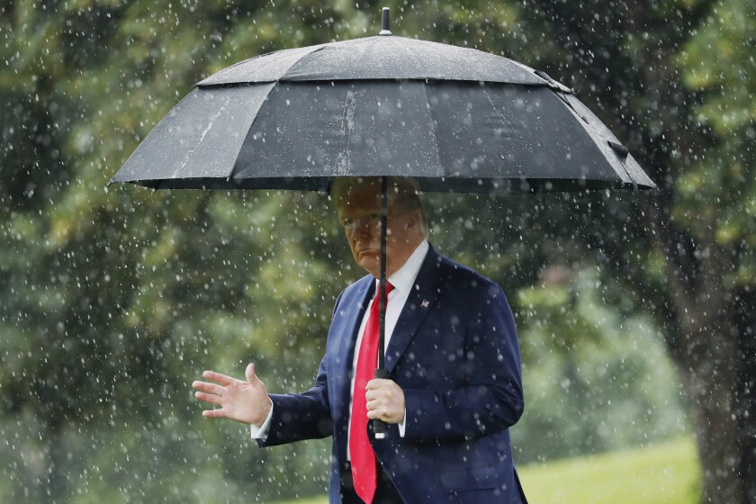 President Donald Trump walks in the rain on the South Lawn of the White House in Washington, Thursday, June 11, 2020, before boarding Marine One for a short trip to Andrews Air Force Base, Md., and then on to Dallas. (AP Photo/Andrew Harnik)