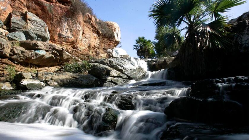 This 2010 photo shows water flowing over the Adobe Falls in Alvarado Canyon adjacent to San Diego State University in the College area after unusually high seasonal rains. The Natural History Museum's third annual State of Biodiversity Symposium included a session on San Diego's urban canyons.