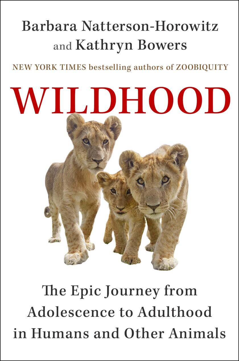 'Wildhood'