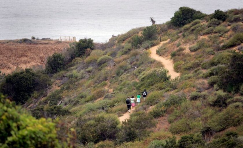 The Torrey Pines State Natural Reserve is a short hike from the Torrey Pines driving range, the scene of a crime.