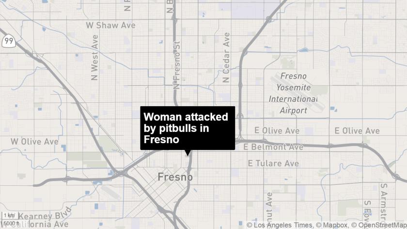 Pitbull attack in Fresno