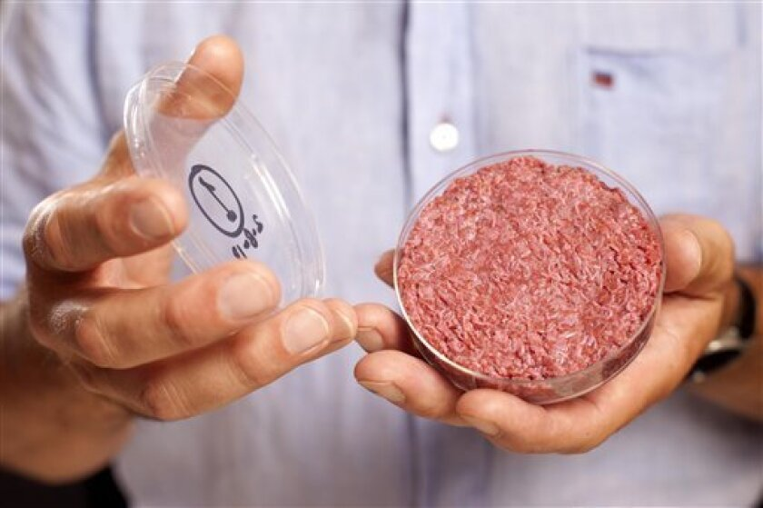 A new Cultured Beef Burger made from cultured beef grown in a laboratory from stem cells of cattle, is held by the man who developed the burger, Professor Mark Post of Netherland's Maastricht University, during a the world's first public tasting event for the food product in London, Monday Aug. 5, 2013. The Cultured Beef could help solve the coming food crisis and combat climate change according to the producers of the burger which cost some 250,000 euros (US dlrs 332,000) to produce. (AP Photo