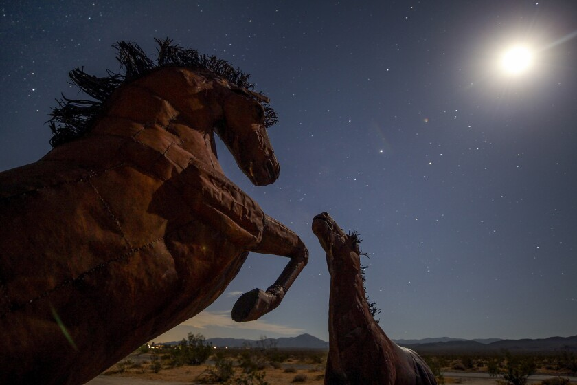 Metal sculptures of horses, one of many sculptures in the Borrego Springs area, under the moonlight on Thursday, July 11, 2019 in Borrego Springs, California.