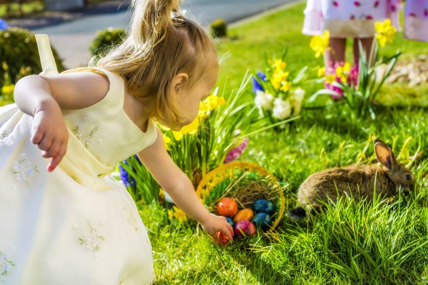 Fun at the Rec Center: Spring into the season with special activities at La Jolla Rec Center, 12:30-2:30 p.m., March 21-23. Includes arts and crafts, reptile show, ice cream social. $5 per child per day, ages 3-10. Egg hunt 10 a.m. to 1 p.m., March 26, with time slots for different ages. 615 Prospe