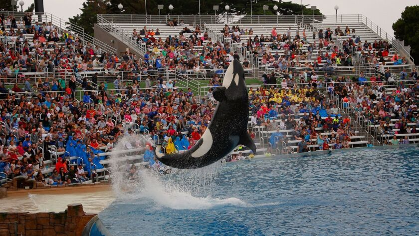 SeaWorld San Diego decided to close Tuesday because of expected strong winds and rain showers.