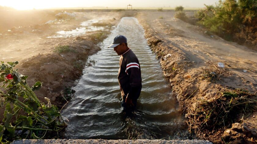Abelardo Martinez stands in a blocked duct that feeds water to his fields near Colonia Coahuila, Mexico, through a maze of canals stemming off the overused Colorado River, which supplies water to millions of people and farms in the U.S. and Mexico.