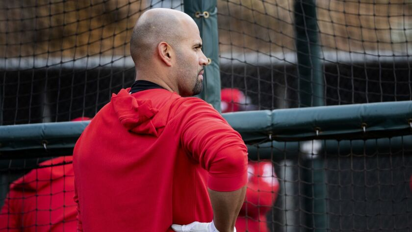 Angels first baseman Albert Pujols gets ready for a spring training practice session on Feb. 18.