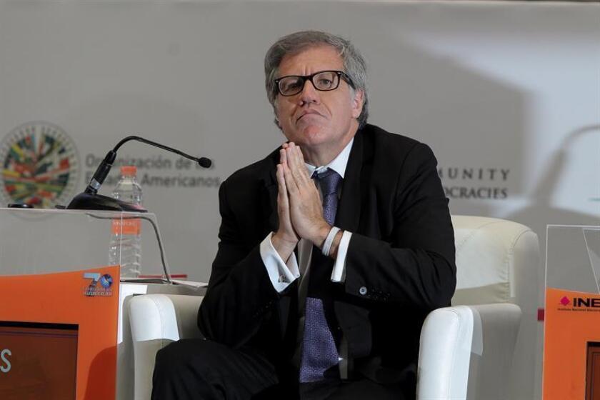 """El secretario general de la Organización de Estados Americanos (OEA), Luis Almagro, fue galardonado con el Premio Oswaldo Payá, Libertad y Vida por su """"destacada actuación en defensa de la democracia"""". EFE/ARCHIVO"""