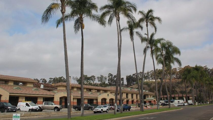 The Whispering Palms Community Services District will take a community vote on removing the palm trees on Cancha de Golf.