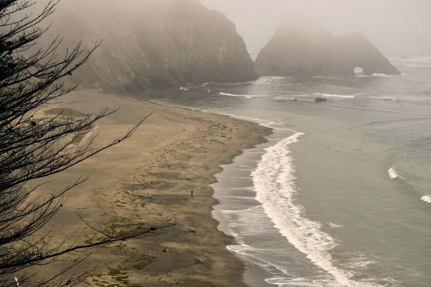 A rugged, rocky beach shrouded in fog.