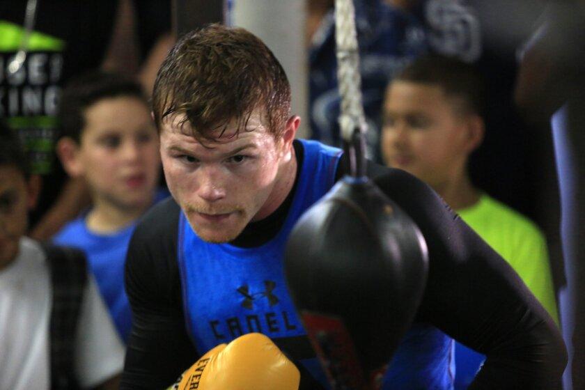 Canelo Álvarez se prepara en San Diego para la pelea mientras que Miguel Cotto suele hacerlo en Nueva Jersey. David Brooks/Union-Tribune