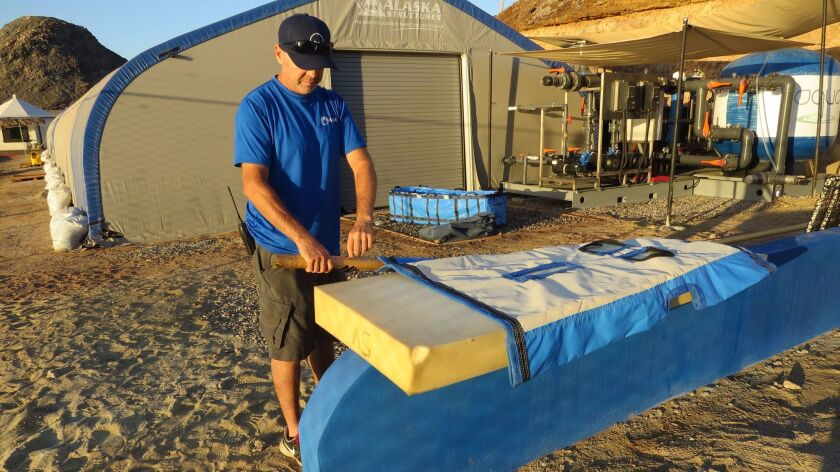 Loren Fish shows a vaquita stretcher custom-made in Hong Kong . Fish is animal care manager at the o