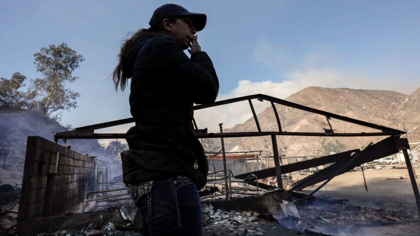 A member of the Padilla family surveys her family's ranch, where 29 horses perished in the Creek fire.