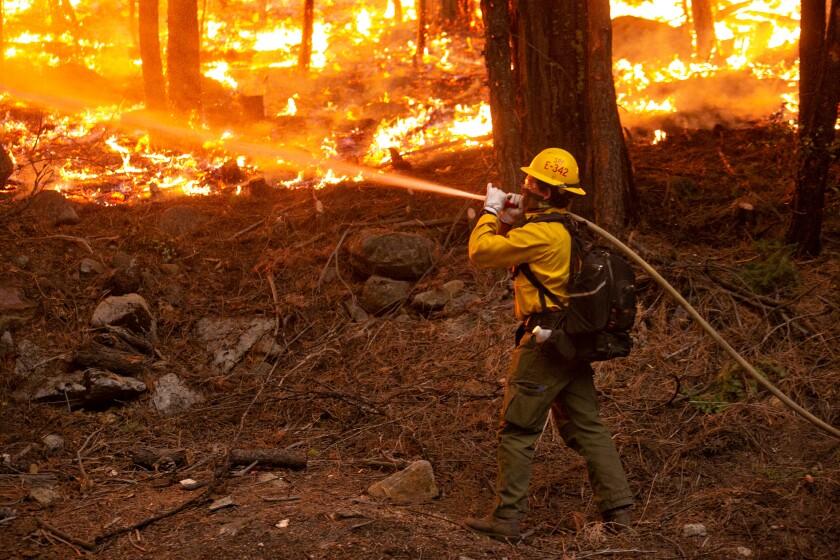 A firefighter battles the Caldor blaze