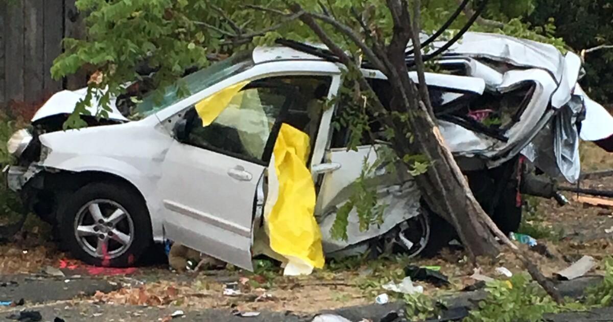 Die Obdachlose Frau und Ihr Hund schlafen im Auto getötet Absturz