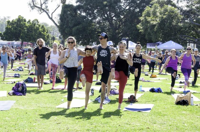 Festival of Yoga