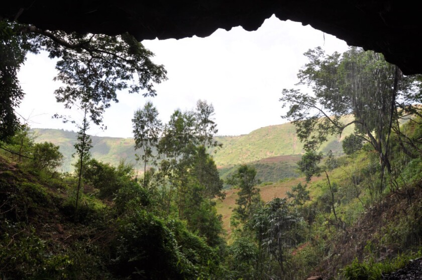 Mota cave in Ethiopia, where researchers found the body of a 4,500-year-old man whose DNA was still preserved.