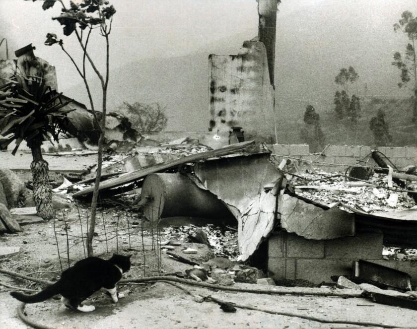 House burned in 1970 Laguna Fire.